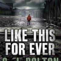 Like This Forever - S.J. Bolton