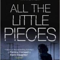 All The Little Pieces – Jilliane Hoffman