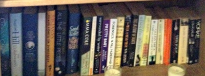 Bookshelf 2 bottom shelf