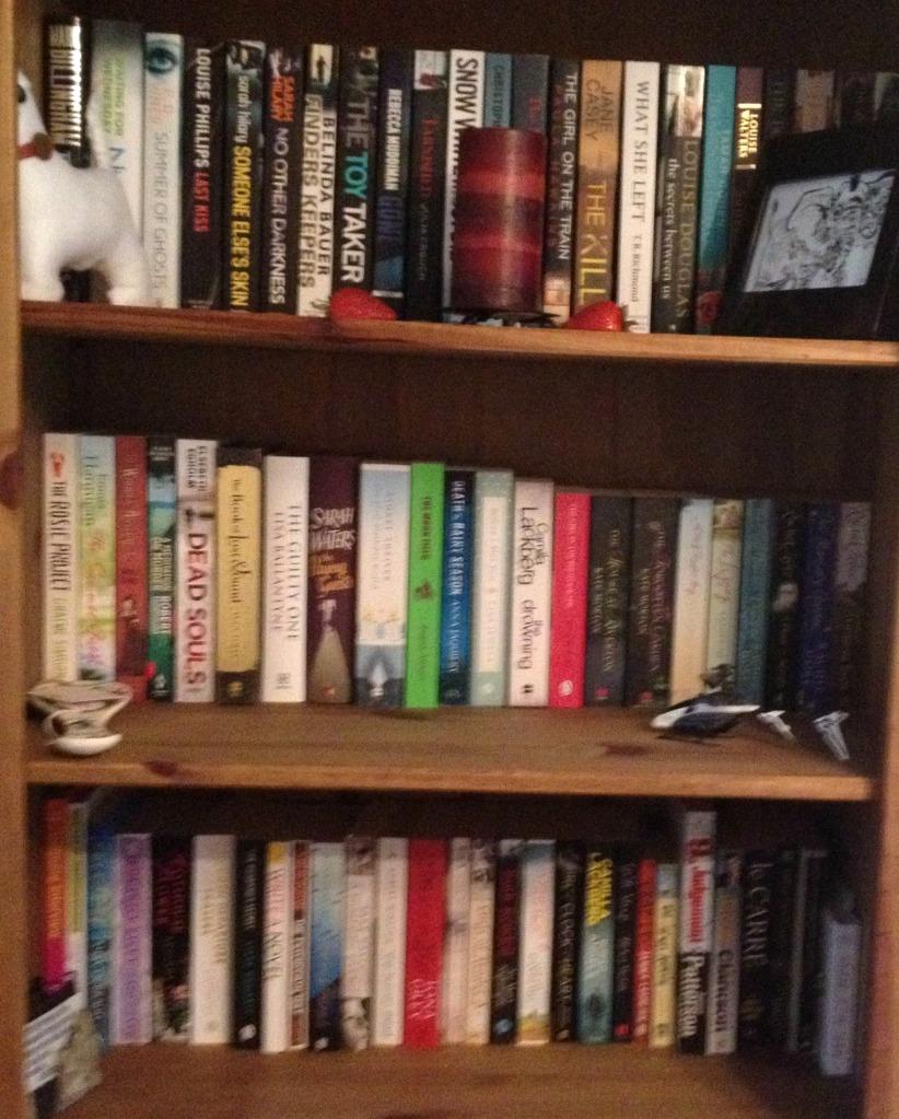 Full Shelf 1