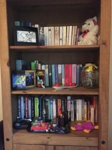 bookshelf-2-november-2016