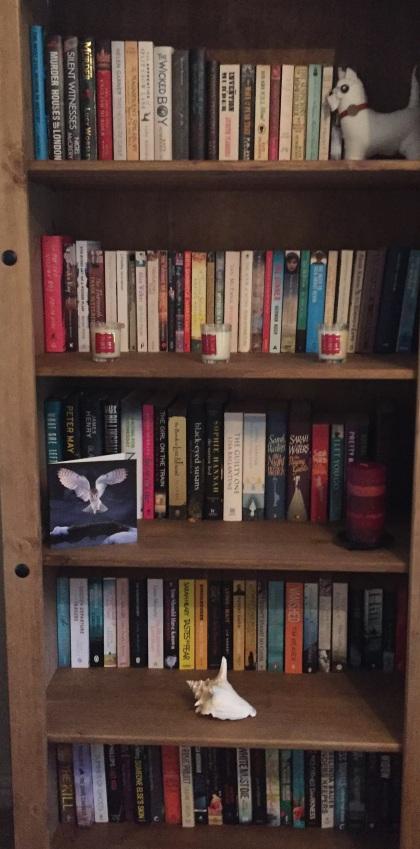 main-bookshelf-november-2016