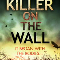 The Killer on the Wall – Emma Kavanagh