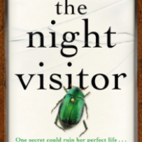 The Night Visitor – Lucy Atkins