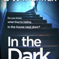 In the Dark – Cara Hunter