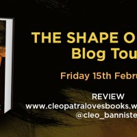The Shape of Lies - Rachel Abbott #BlogTour